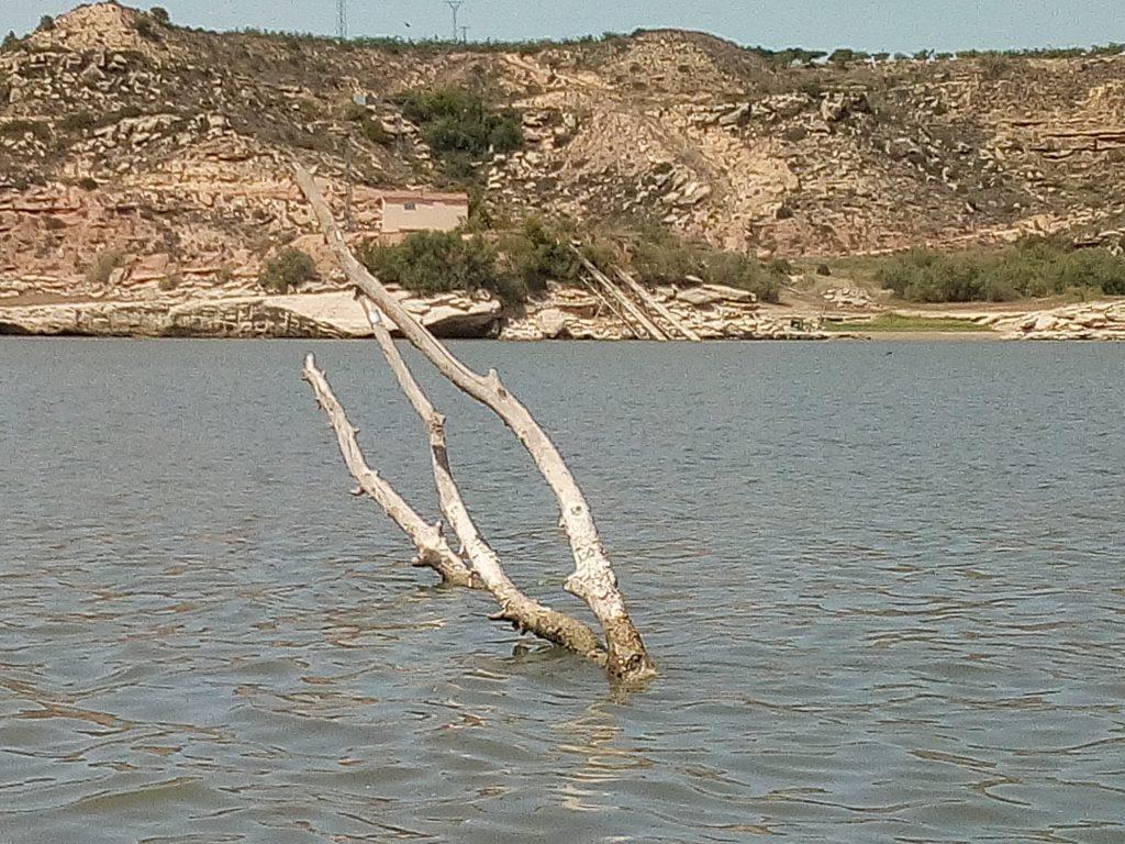 Ebro boom